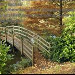Places to visit in Worcestershire Bodenham Arboretum